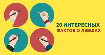 20 интересных фактов
